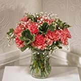 15 Pink Carnations Fresh Flowers by Post delivered to the UK