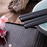 Foster 5-Pairs Fiberglass Dishwasher-safe Chopsticks (Japanese Minimalism - Floating Flowers)