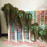 Wholesale ! beautiful natural peacock feathers eyes 50pcs 10-40 inches/25-100 cm (Color: Self color, Tamaño: 35-40 Inches)