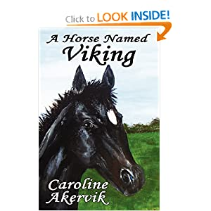 A Horse Named Viking