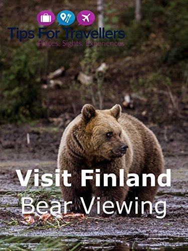 Visit Finland Bear Viewing in Karhu-Kuusamo
