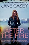 After the Fire (Maeve Kerrigan)