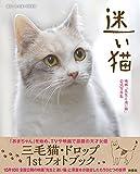 迷い猫映画先生と迷い猫公式写真集