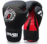 Dragon gants mMA