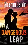 A Dangerous Leap (Gulf Coast Rescue Book 1)