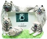 E&S Pets 35257-145 Large Dog Frames