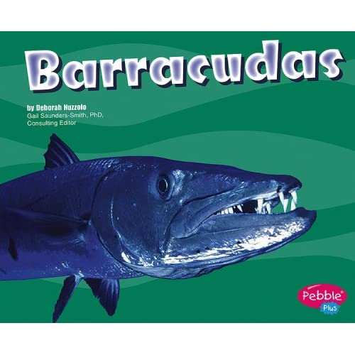 Barracudas (Under the Sea)