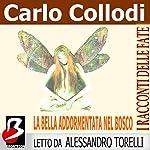 La Bella Addormentata nel Bosco [Sleeping Beauty] | Carlo Collodi,Charles Perrault