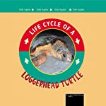 Loggerhead Turtle: Life Cycles Series | Jason Cooper