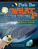 Fish Do WHAT in the Water? The Secret Lives of Marine Animals (Farcountry Explorer Books)