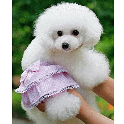 サニタリーパンツ 生理パンツ マナーパンツ 犬用 リボン 花柄フリルピンク Sサイズ