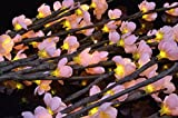 Battery Operated Plum Blossom Branches w/ Pink Flowers
