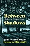 img - for Between Shadows: Modern Irish Writing and Culture book / textbook / text book