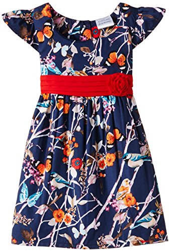 Doodle Baby Girls' Dress (FDSWN2057 B BB_Navy_18-24 months)