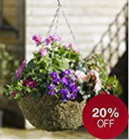 Traditional Moss Lined Hanging Basket