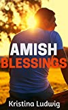Amish Blessings: Miriam and Abram's Book (Amish Friendships 3)