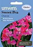 Unwins Pictorial Packet - Sweet Pea Chance - 21 Seeds