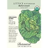 Butterhead Buttercrunch Lettuce Seeds Certified Organic 1000 Seeds