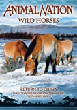 Animal Nation - Wild Horses - Return To China [DVD]