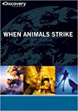 When Animals Strike