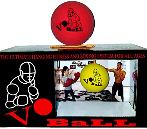 Vo Ball-The Ultimate Home Fitness, Boxing and Martial Arts System for All Ages.