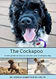 The Cockapoo: A vets guide on how to care for your Cockapoo dog