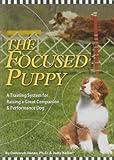 The Focused Puppy