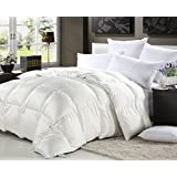 800 Thread Count Full 800TC Goose Down Comforter 600FP, White 800 TCby Bedding Warehouse