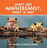 What Are Amphibians?, What & Why : 1st Grade Science Series: First Grade Books - Herpetology (Children's Reptile & Amphibian Books)