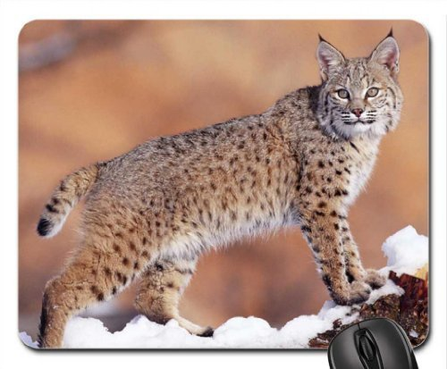 bobcat-mouse-pad-mousepad-cats-mouse-pad-by-rock-bull