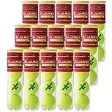 DUNLOP(ダンロップ) コウシキテニスボール St.JAMES [ セント・ジェームス ] 1ケース(15ボトル)売り