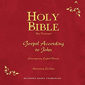 Holy Bible, Volume 25 Audiobook