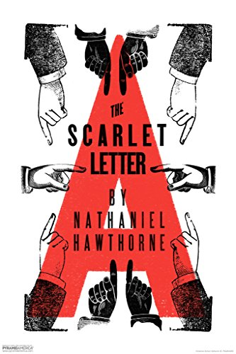 an analysis of the character hester prynne in the scarlet letter novel by nathaniel hawthorne The scarlet letter: struggle of a hester prynne  the scarlet letter' is a classical novel in the 19  a hester prynne in the 17 th century puritan society.