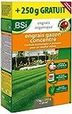 BSI Engrais gazon organique concentre 25 m