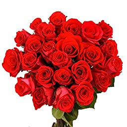 50 Red Roses Absolutely Lovely | Perfect for Birthdays!