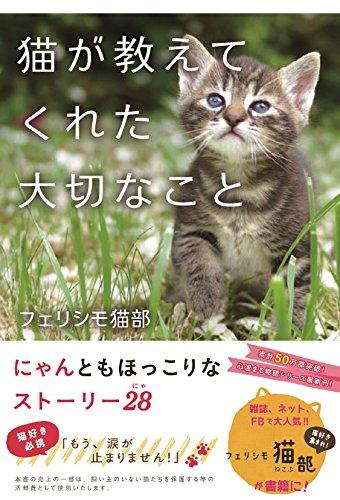 猫が教えてくれた大切なこと (~心温まる物語シリーズ)