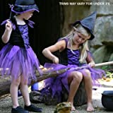 Girls Fairy Witch Fancy Dress/Halloween Costume 3-5 Years