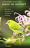 A Photographic Guide to the Birds of Hawai'i: The Main Islands and Offshore Waters (Latitude 20 Books)