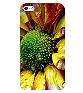 PrintDhaba FLOWER D-6969 Back Case Cover for APPLE IPHONE 5S (Multi-Coloured)