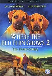 a book summary of wilson rawls where the red fern grows Where the red fern grows author/context wilson rawls was born woodrow wilson rawls on sept 24, 1913, on a small oklahoma farm his parents were minzy o rawls and winnie hatfield rawls.