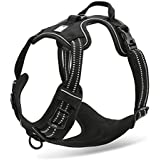 Chai's Choice Best Front Range No Pull Dog Harness (Black, Small)