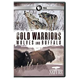 Nature: Cold Warriors - Wolves & Buffalos