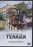 A Day in the Life of a Terrier - Eccentric Terrier Tank Engines (DVD)