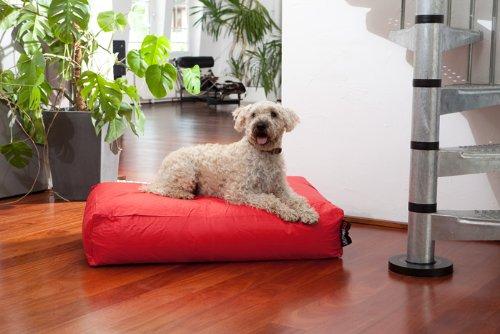 Artikelbild: Hundebett Classic Farbe: Rot