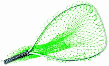 Eagle Claw Trout Net with Retractable Cord 14-12 x 11 x 19-Inch