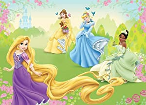 Wallpaper mural disney princesses fleece photo wallpaper for Disney princess wallpaper mural uk