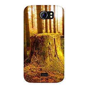 Tree Trunk Print Back Case Cover for Micromax Canvas 2 A110