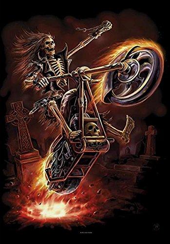 ANNE STOKES banidera Poster Bandiera chiaro Rider
