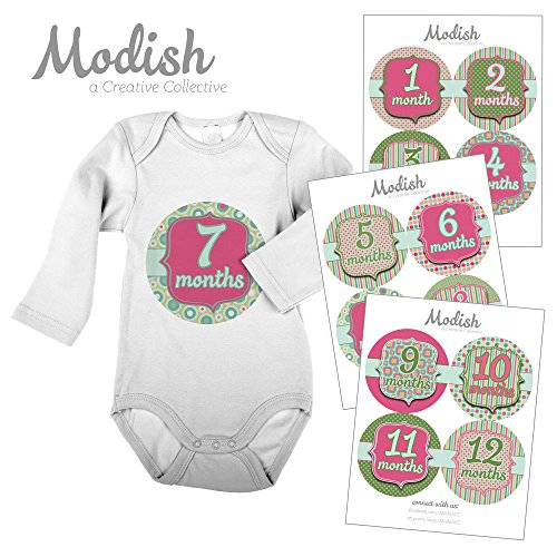 12 Monthly Baby Stickers, Pink & Green, Baby Girl, Baby Belly Stickers, Monthly Onesie Stickers, First Year Stickers Months 1-12, Pink, Green, Girl
