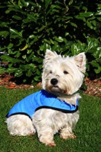 Prestige Cool Coat for Dogs, S, Blue